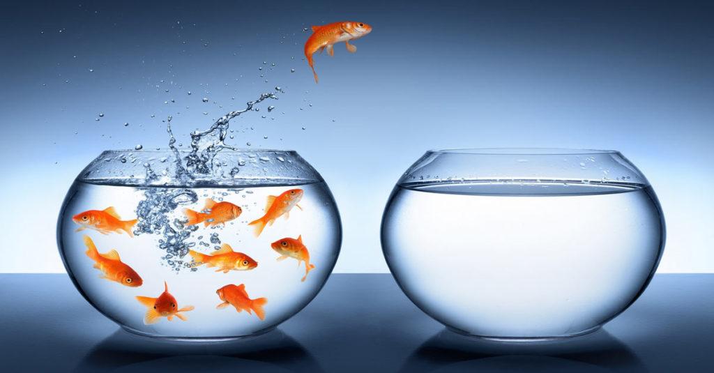 Başarıya Ulaşmak için Cesur Olun