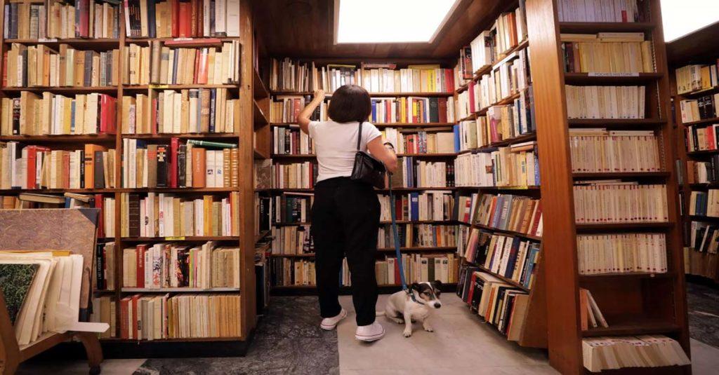 Kitap Okumanın Önemi ve Kitap Tutkusu