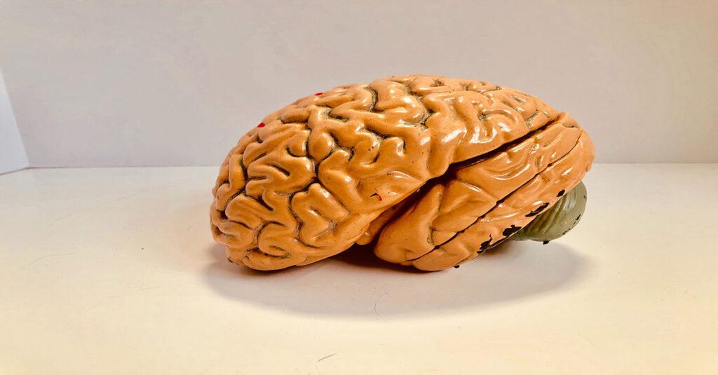 Zihninizi Daha Etkin Kullanarak Kolay Öğrenin